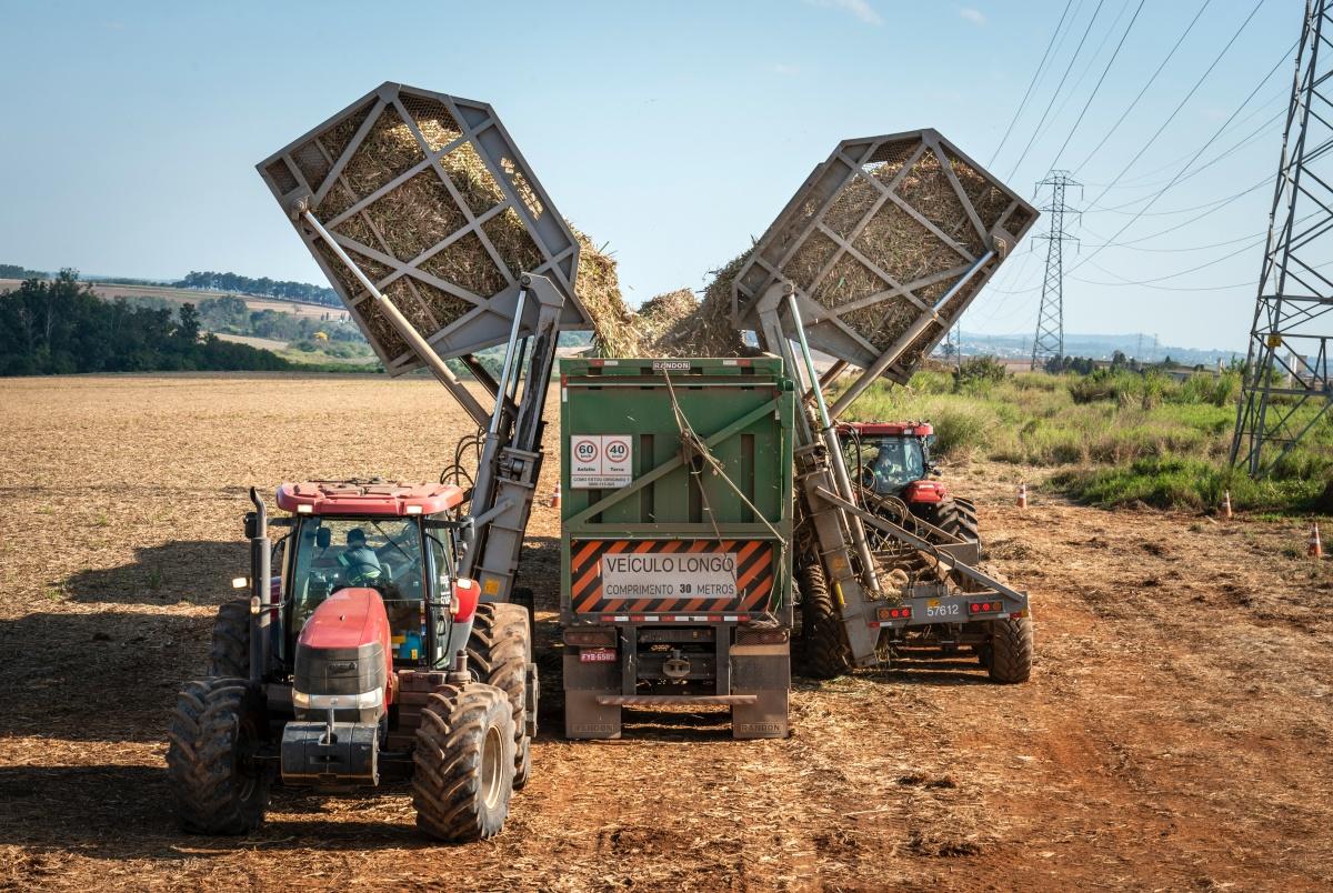 grondstof voor biobrandstoffen oogsten lng