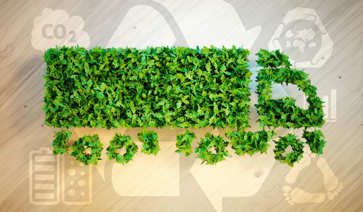 dkti regeling voor ondernemers voor groene innovaties
